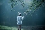 霧の中 桜の下