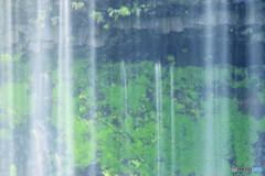 PH-0310_白糸の滝③