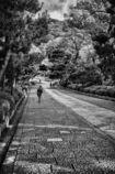 京都ひとり旅