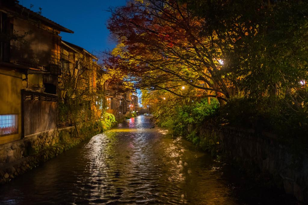 夜の祇園白川
