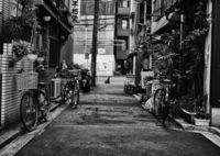 LEICA M Monochromで撮影した(路地)の写真(画像)