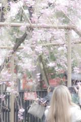 ふんわり春