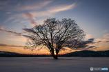 Winter's melancholy