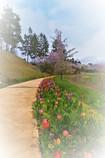 花の歌♬*.+