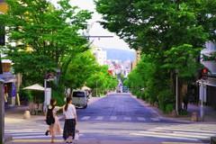 新緑の道を☆。.:*・゜