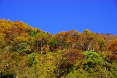 山と暮らす~里山の秋~