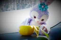 君と雪の壁を眺めながら♬*.+~おやつの時間~