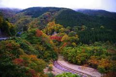 君と眺めた美しい秋~赤い橋の記憶~