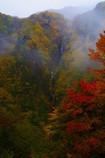 霧につつまれる秋~八滝~