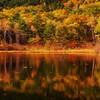 輝く秋☆。.:*・゜