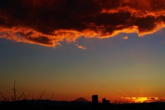 flames of sunset~♬*.+
