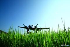 田んぼの中の飛行機