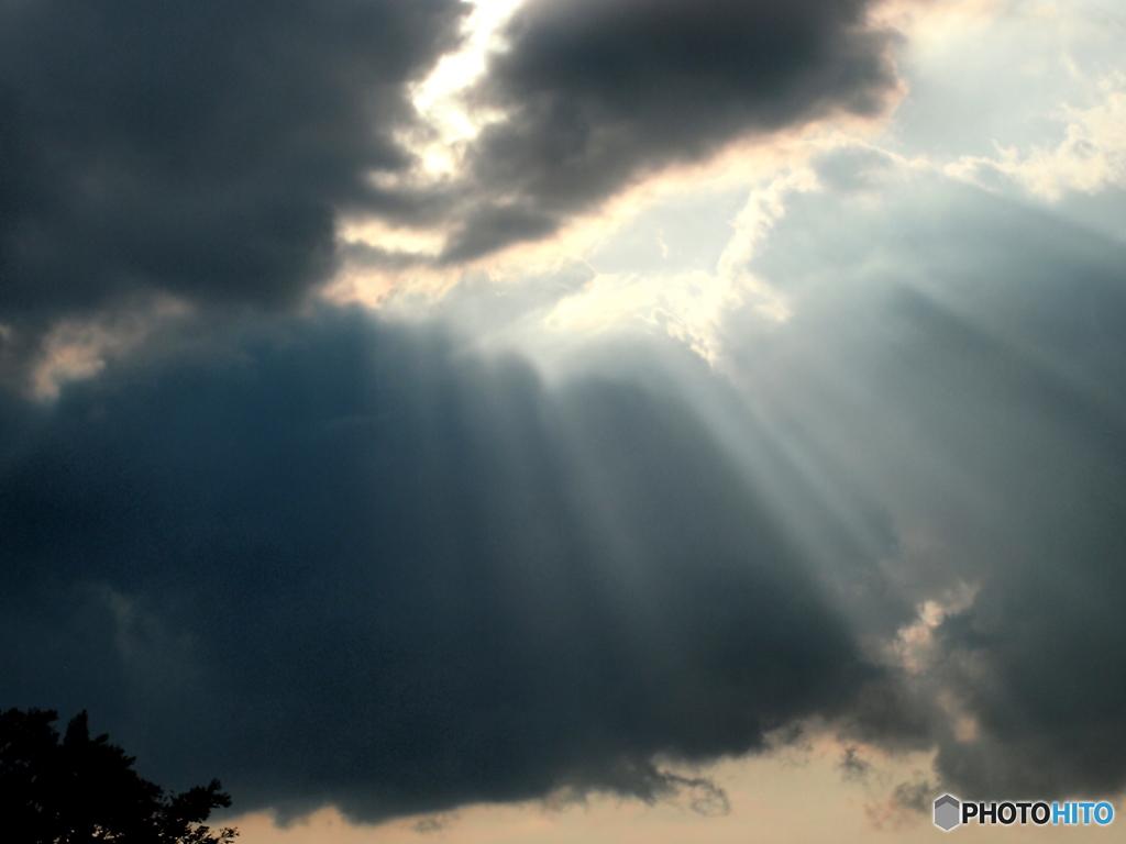 たまには空を見よう