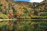 刈込湖と紅葉