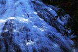湯滝と木漏れ日