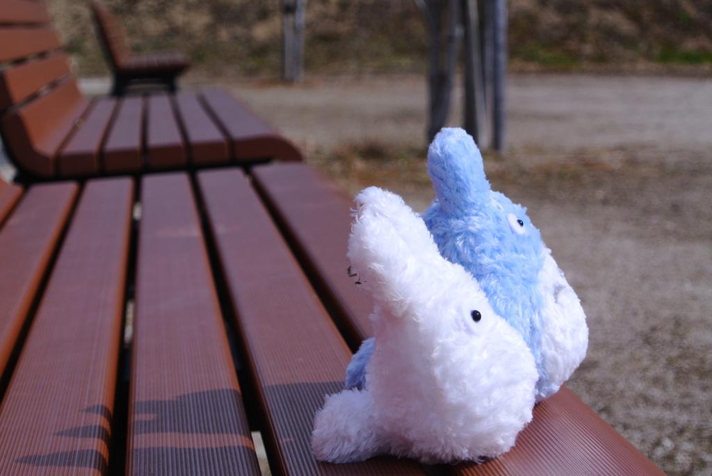 トトロ in 公園①