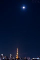 月夜の東京タワー