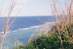 風が吹く海