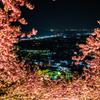 春の訪れと夜の町並み