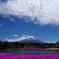 日の丸富士山
