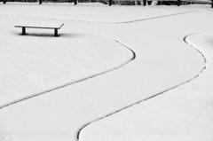雪の朝の公園