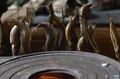 甘子(アマゴ)と岩魚(イワナ)の塩焼き