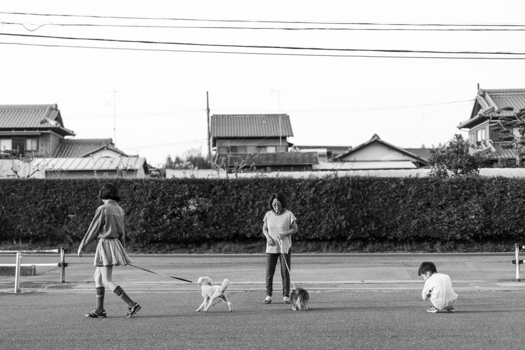 2(子+犬)+母