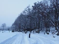初冬のキャンプ場