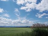 風そよぐ猪苗代湖畔