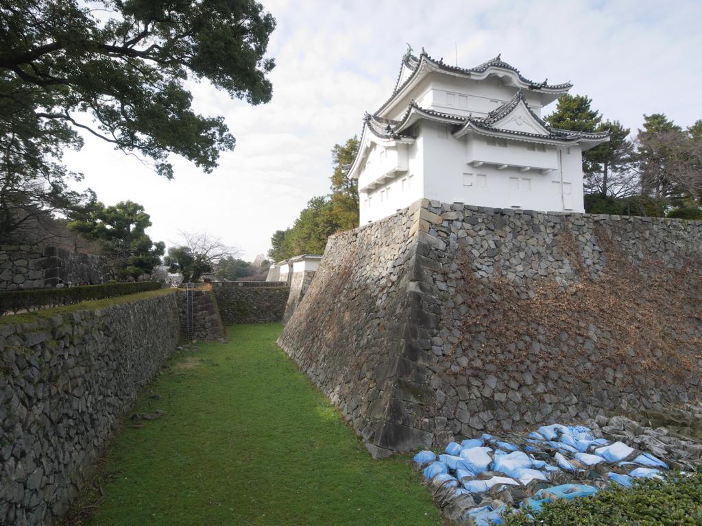 名古屋城 堀 P1000101