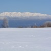 雪山賛歌1(菅平)