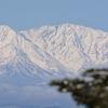 雪山賛歌8(菅平)
