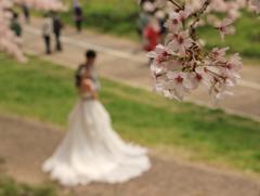 桜と2人の最初のスタート