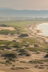 砂丘から望む