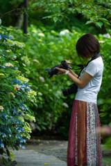 季節の華を撮る