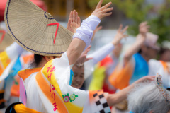 踊っこ祭り
