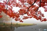 11月の公園 -朝霧-