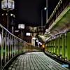 NIGHT BRIDGE 5