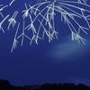 夜空の華 2 (落雷のように)( ^o^)
