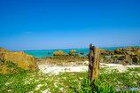 島の海岸探索(*^^*)