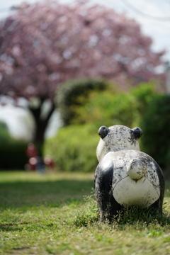 パンダのいる公園
