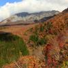 ☆大山の紅葉