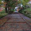☆秋の古刹めぐり--小雨のあと
