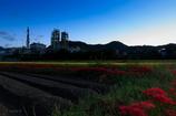 工場と曼珠沙華