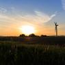 ☆鳳凰と風車ー朝日を浴びて