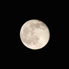 月の丸構図_2797