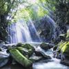 目覚め-光の滝-