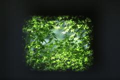 季節を写す小窓