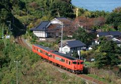 黄金仏とタラコ列車