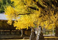 晩秋の福田神社